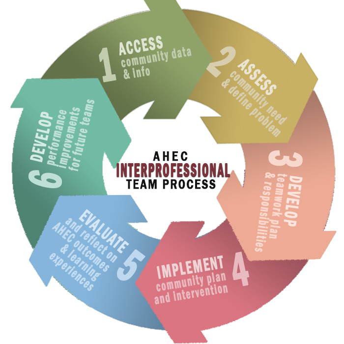 The 6 Steps of the Interprofessional Team Process